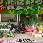 沖縄離島移住生活