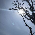 石垣島ライタリアンレイキヒーリング体験談